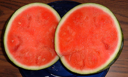 Bild einer Wassermelone